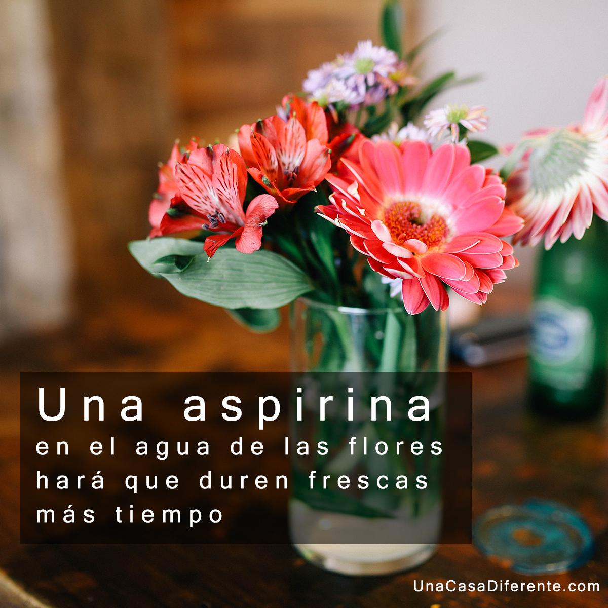Aspirina en agua para las flores